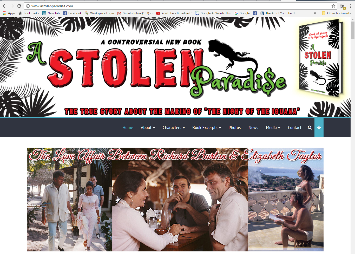 A Stolen Paradise Website Design