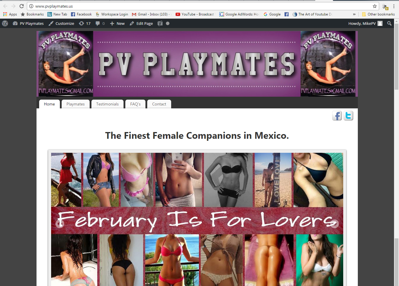 PV Playmates Website Design